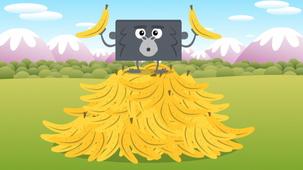 Vidéo - Les gorilles