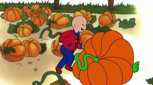 Vidéo - Pumpkin Patch Kid