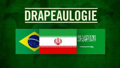 Site web - Drapeaulogy