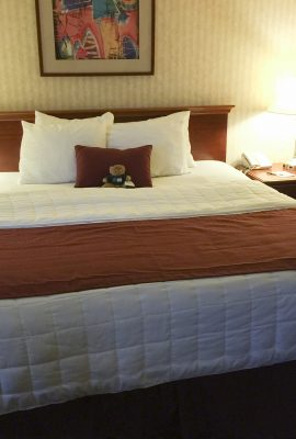 hope the bear on a big queen bed at the inn at longwood medical