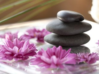 Purple daisies and hot stone spa treatment