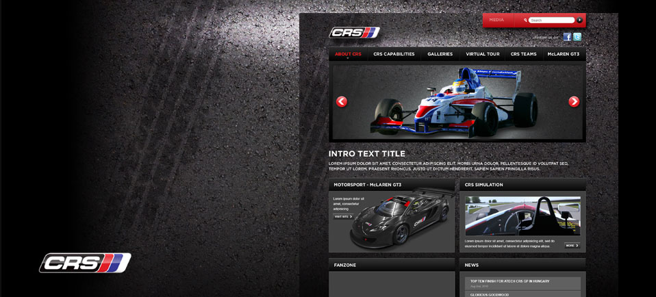 CRS website concept design