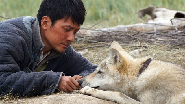 Man And Beast Collide In 'Wolf Totem'