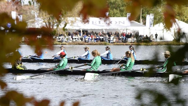 Head of the Charles Regatta Appoints New Chairperson