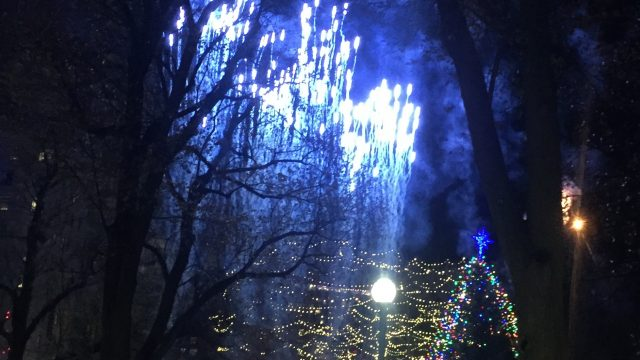 Thousands Welcome the Holiday Season at the Boston Common Tree Lighting Ceremony