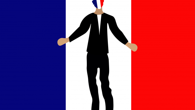 Assessing the French Election