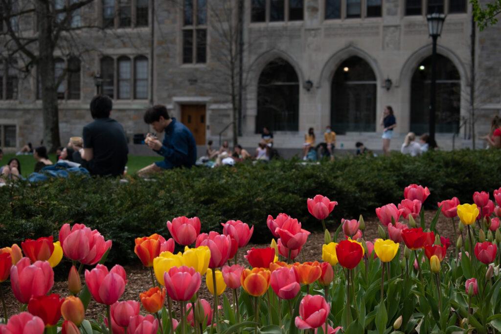 Lynch School, Others Create Study on State of Urban Catholic Schools