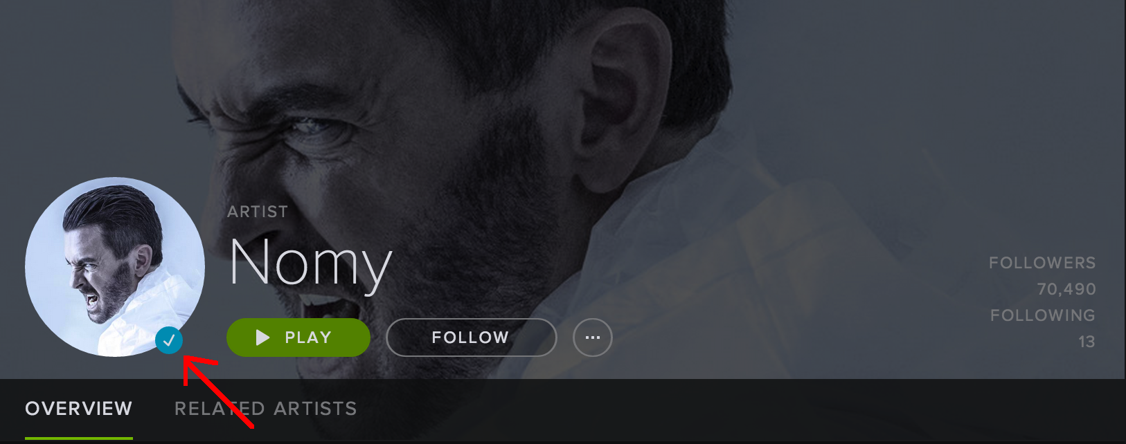 Nomy Spotify Artist Page