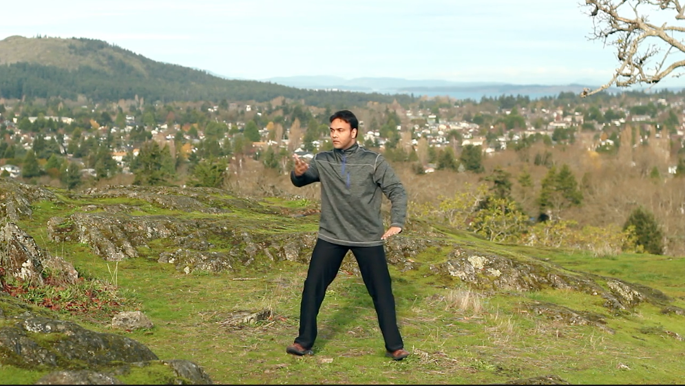Qi Gong for Vitality