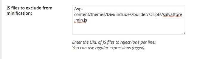 Divi Theme - JS Minification