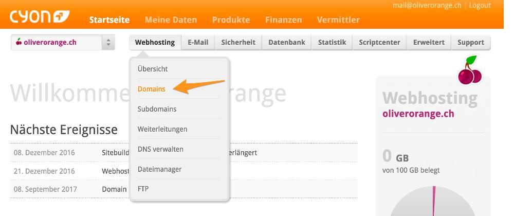 Menü «webhosting»> «Domains»