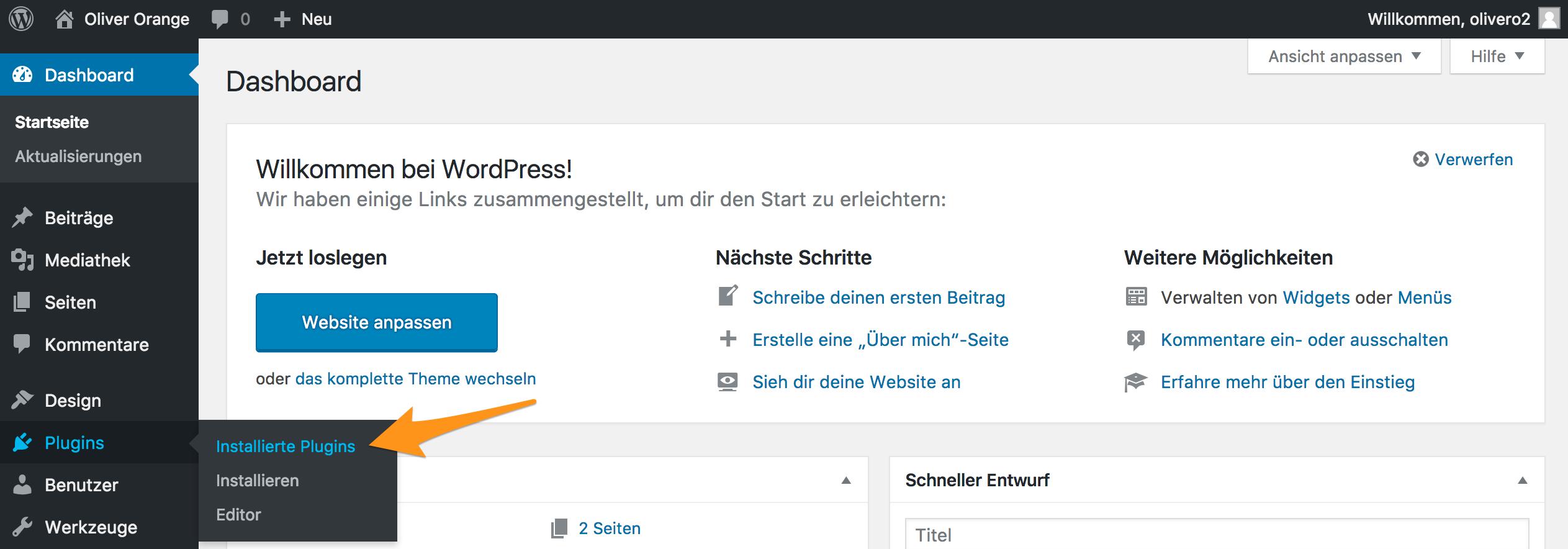 Menü «Plugins» im WordPress-Backend