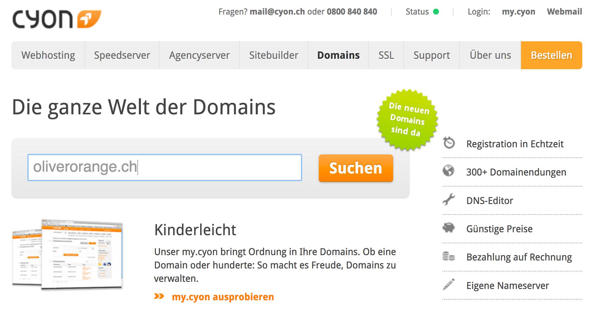 Domain Status prüfen