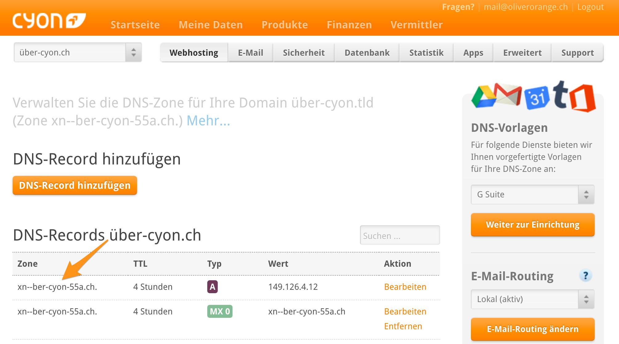 IDN im DNS-Editor