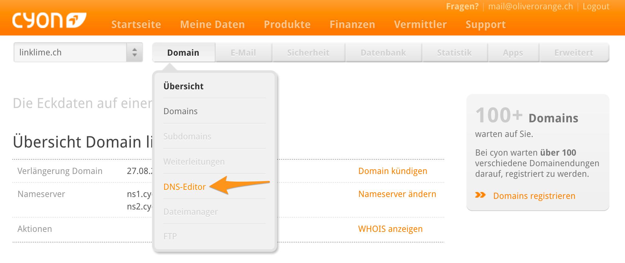 Menü «DNS-Editor»