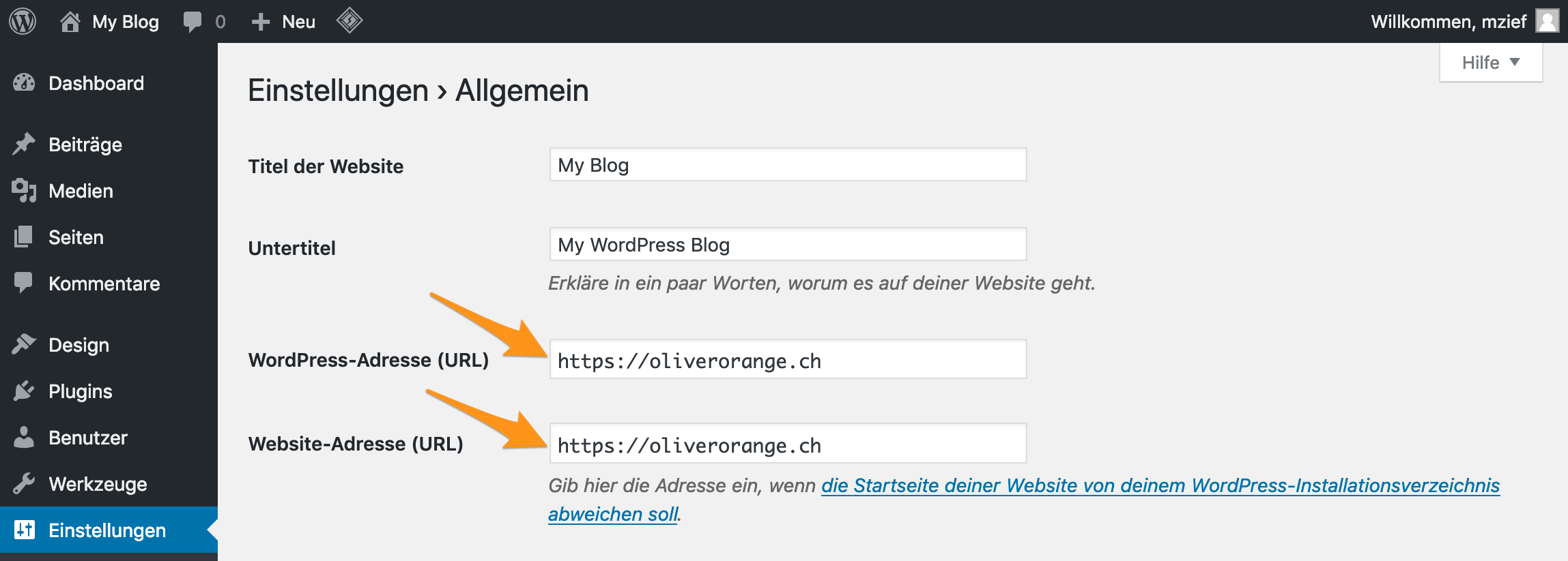 Ändern der Domain im WordPress-Backend