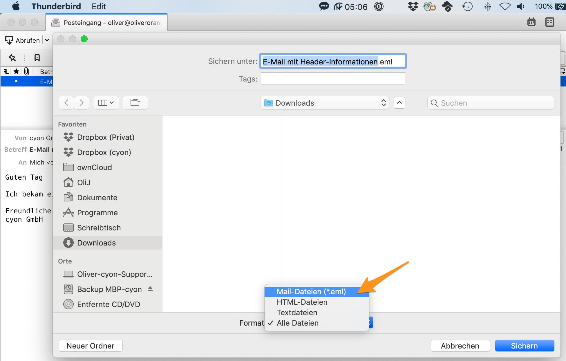 Dateinamen, Speicherort und Format wählen und E-Mail speichern.