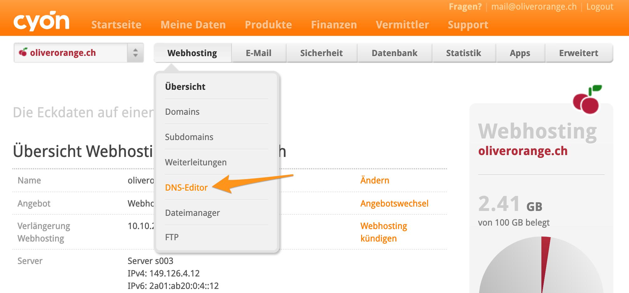 Menü «DNS-Editor» im my.cyon