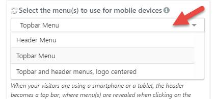 Mobile menus expanded