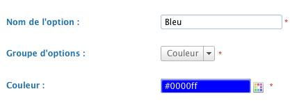 option-couleur.png