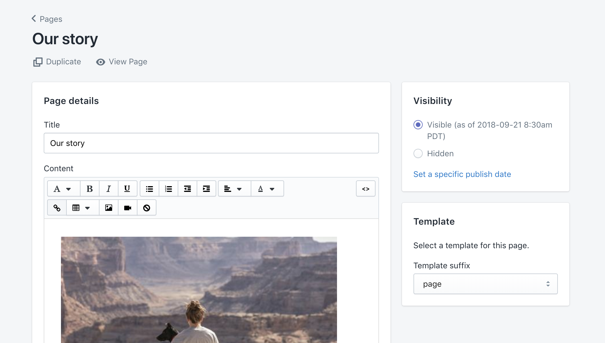 """Example """"Our story"""" page in static page editor"""