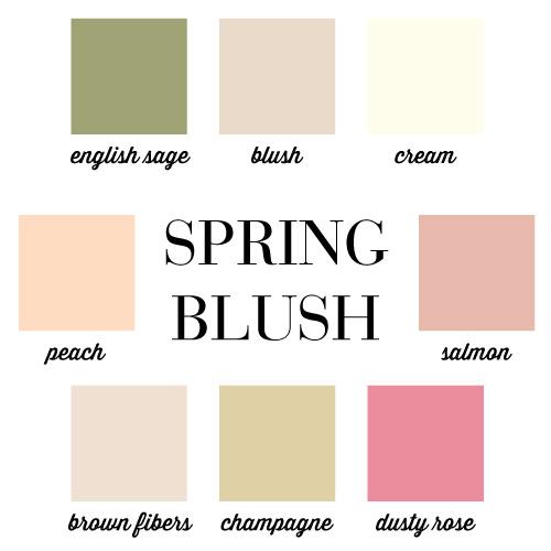 champagne pale blush palette