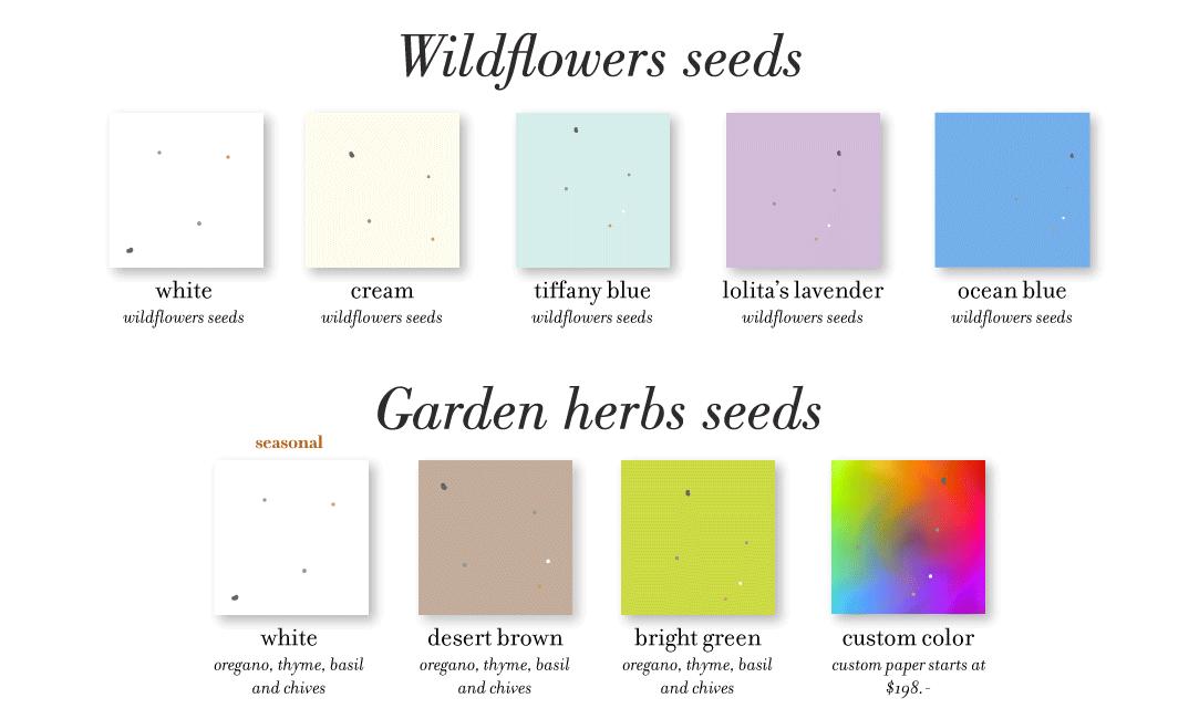 seeded paper colors herbs flowers