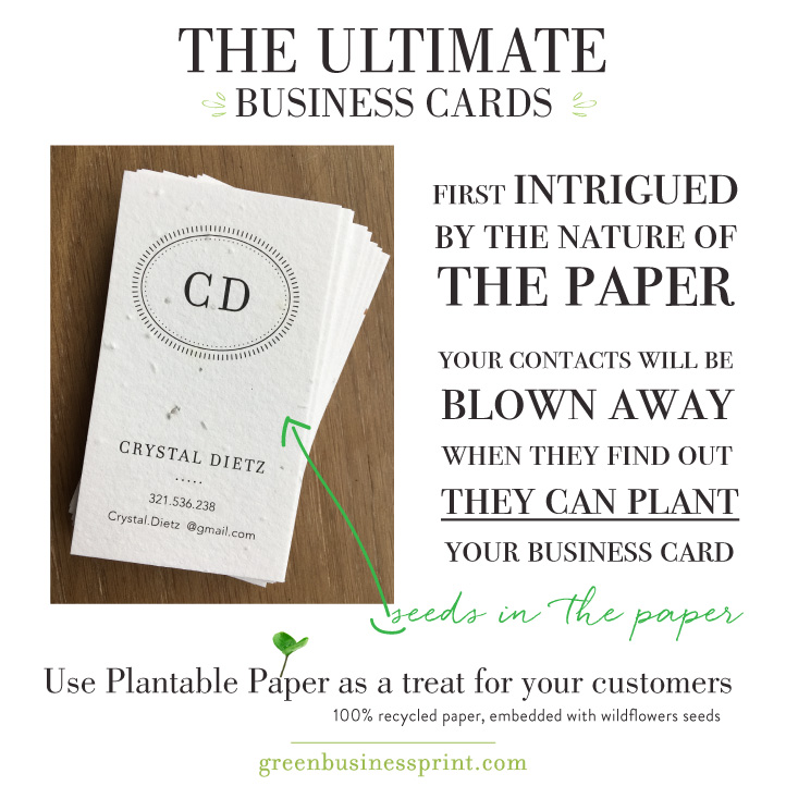 Seeded paper business cards green