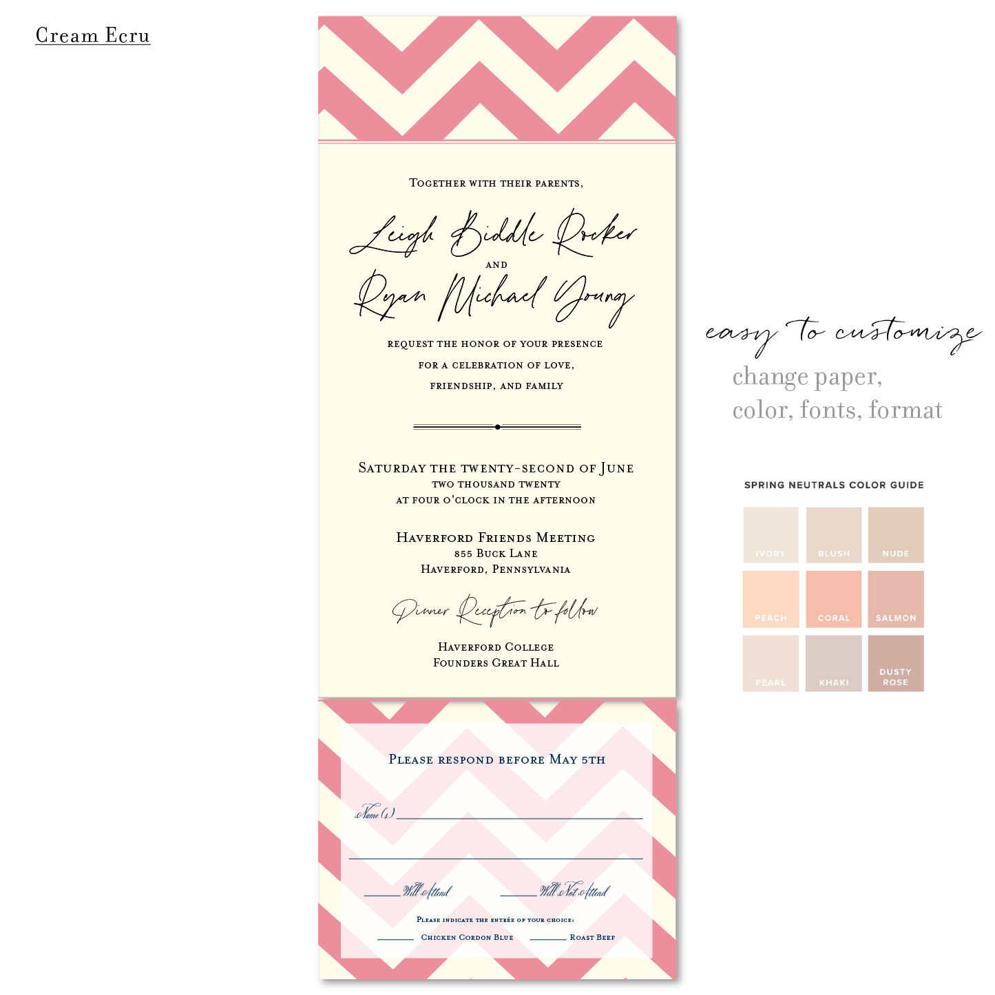 modern chevron dusty rose