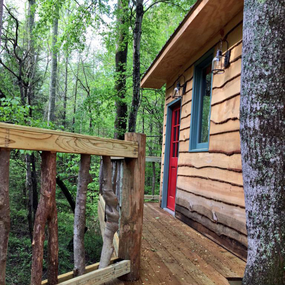 Dale Earnhardt Jr.'s Dream Treehouse Almost Complete