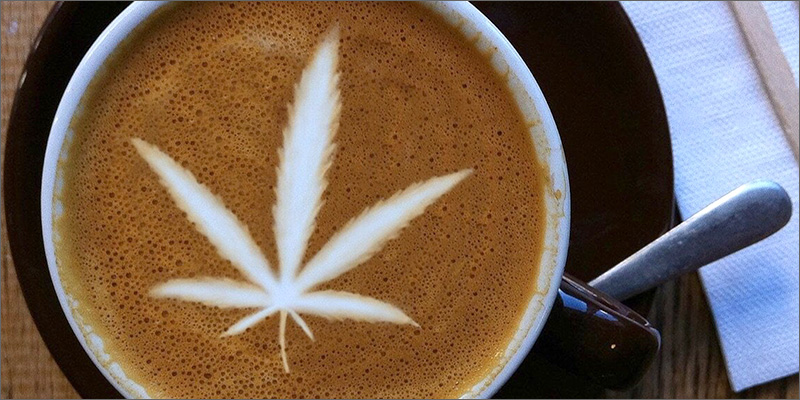 Image result for cbd coffee
