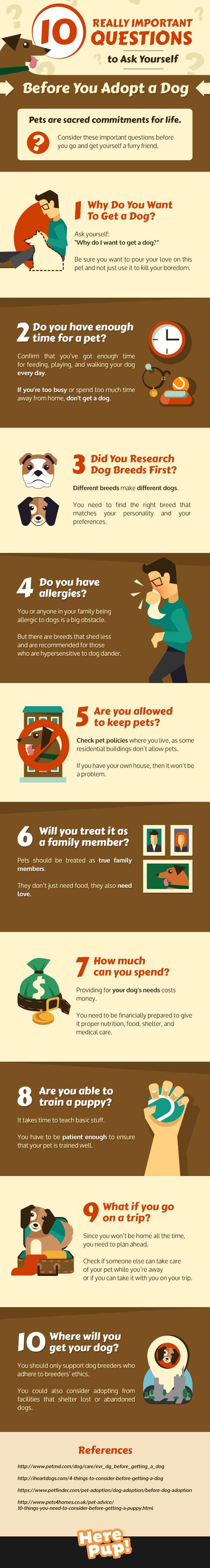 10 Really Important Questions You Should Ask Yourself Before You Adopt a Dog