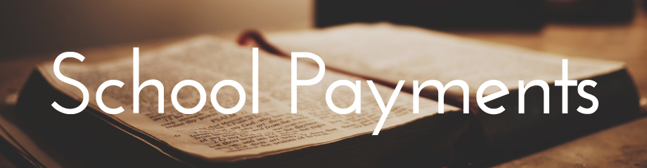 School payments 920x240