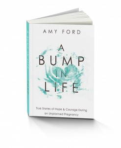 A bump in life bk mock up 247x300