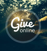 Give online2
