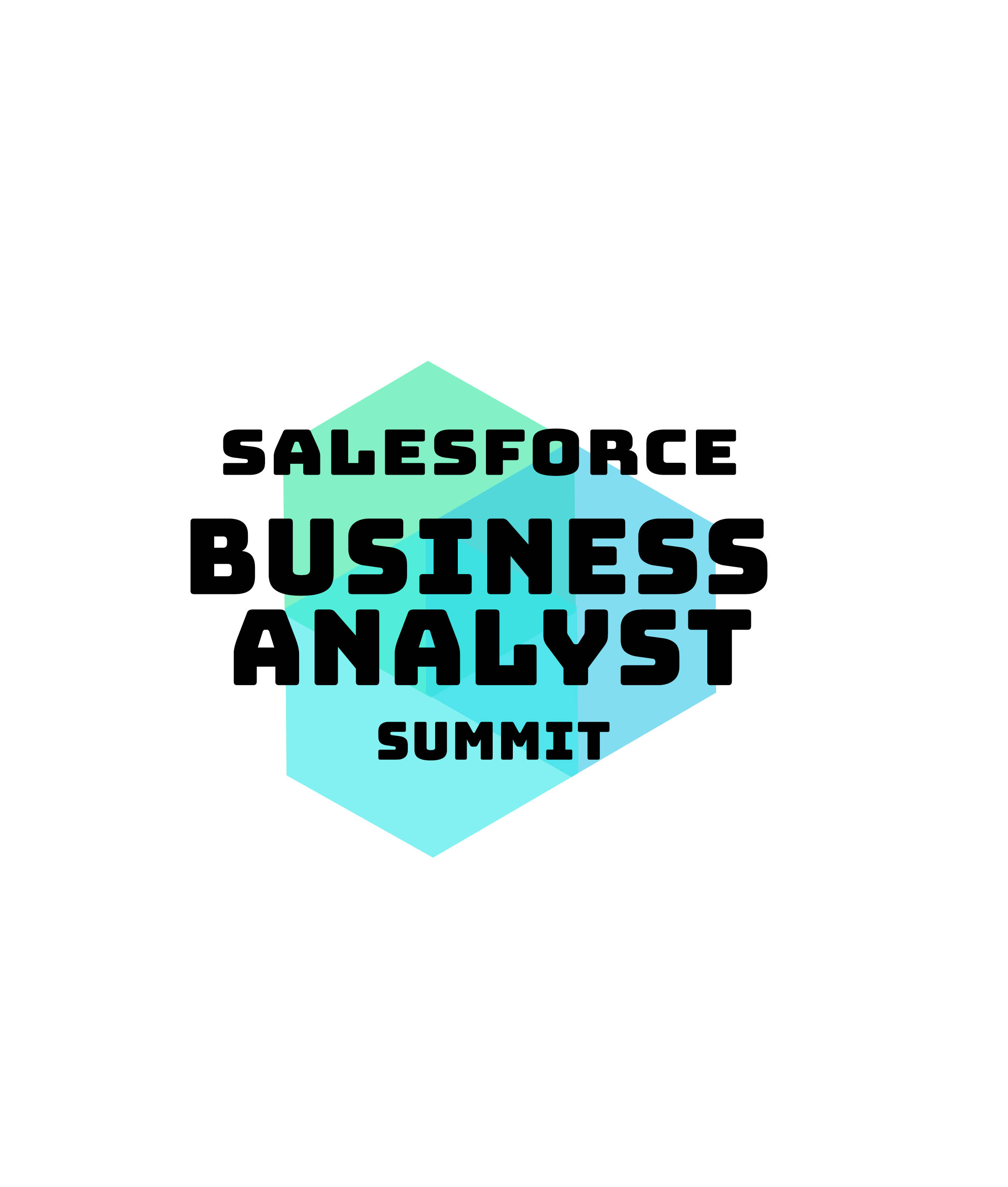 Salesforce Business Analyst Virtual Summit