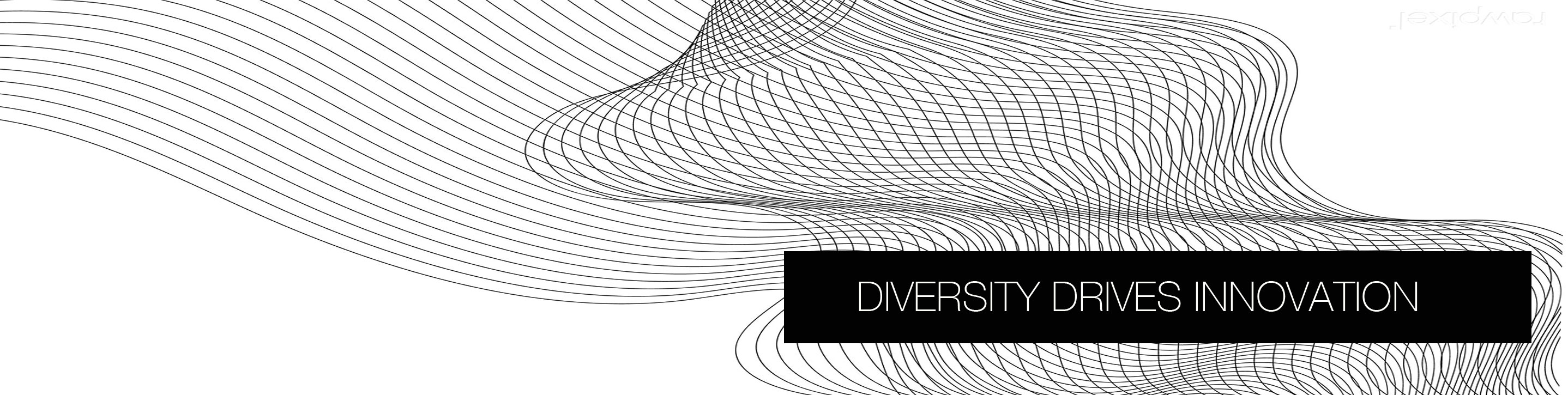 Diversity and Technology Conference