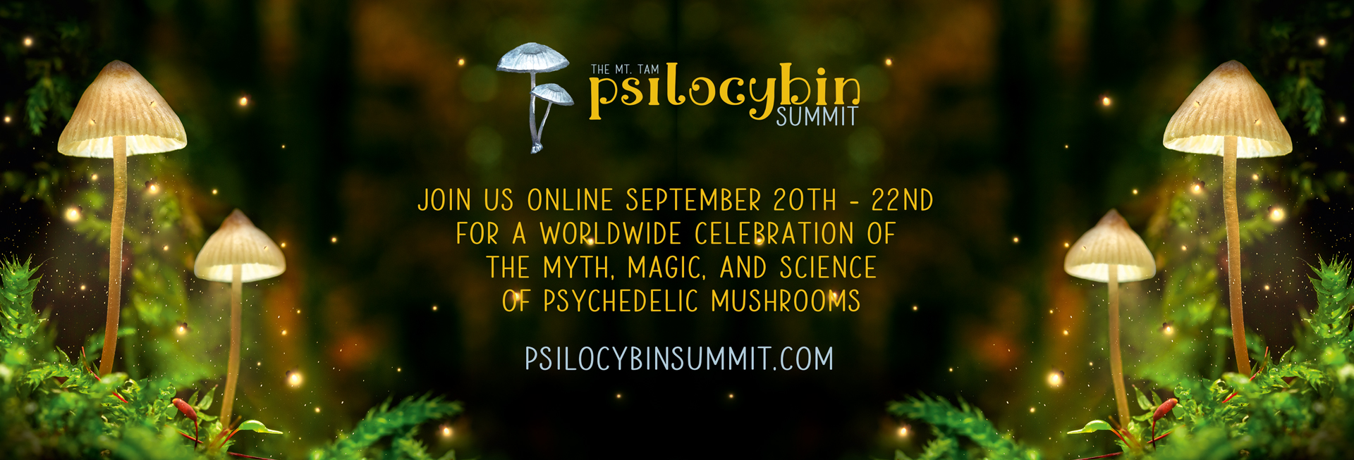 psilocybin summit