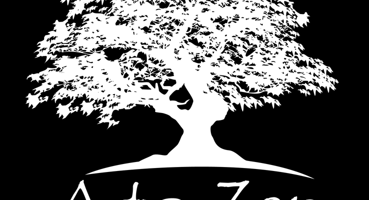 A to zen massage   wellness center