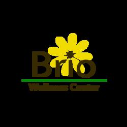 Bright brio logo transparent 01
