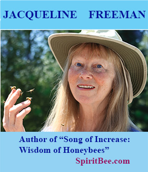 Image result for jacqueline freeman image