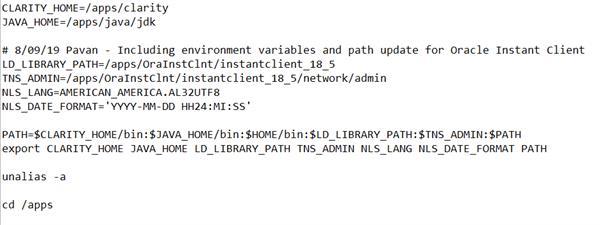 environment variables set