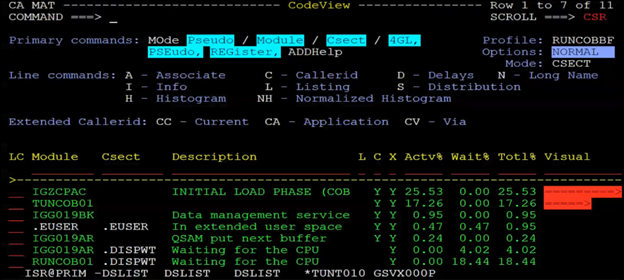 Fig. 3. The CodeView panel in CA MAT