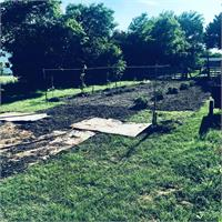 Working on vineyard with blackberries, blueberries, grapevines, and apple trees