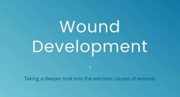 Wound Development: Taking a deeper look into the 3 extrinsic factors of wound development: pressure, shear and microclimate