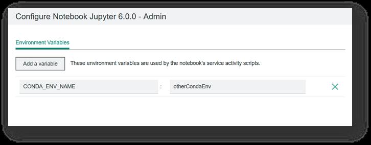 CONDA_ENV_NAME example