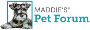 Maddie's Pet Forum