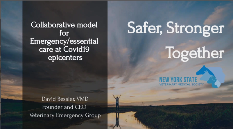 Collaborative Emergency Services Model New York State Veterinary