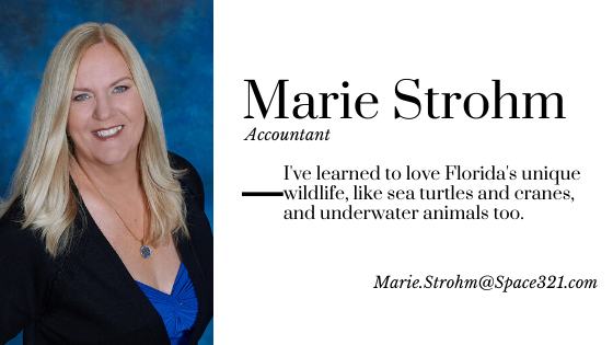 Marie Strohm, Accountant