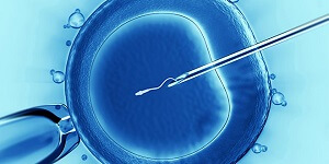 Embryology & IVF